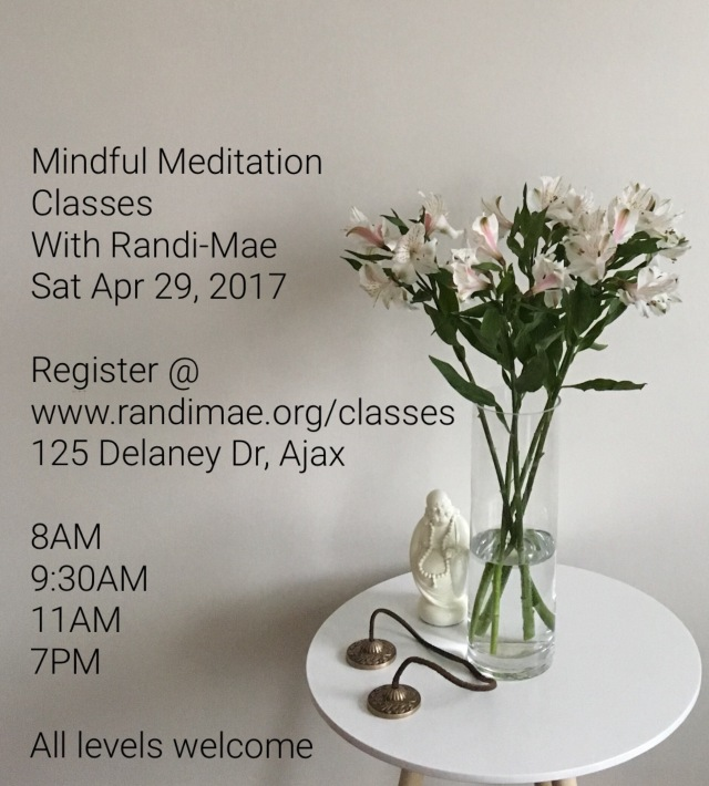 Sat Apr 29 meditation classes