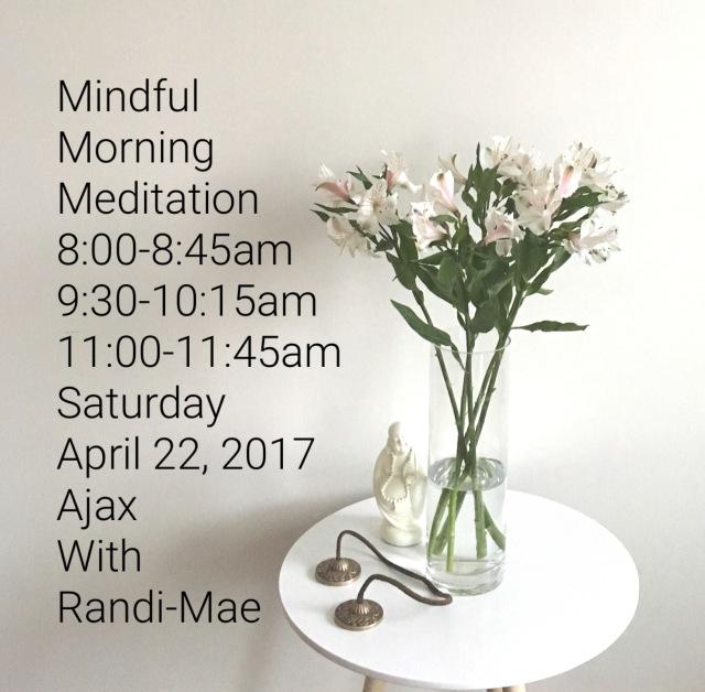 Mindful Meditation Apr222017